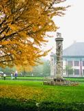 peking_university