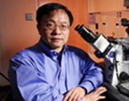 Gang Bao, PhD