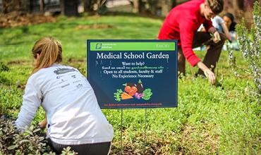 medical school garden
